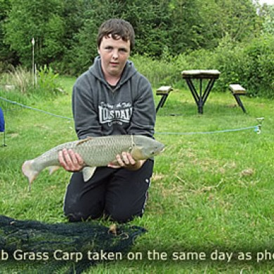 Grass Carp 1 Legge Farm Gallery Fish Caught